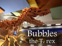 Bubbles the T. rex